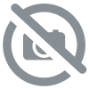 DSS Player Standard Transcription Module  Serial number